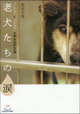 """老犬たちの淚 """"いのち""""と""""こころ""""を守る14の方法"""