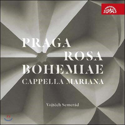 Cappella Mariana 르네상스 시대 프라하의 음악 (Praga Rosa Bohemiae)