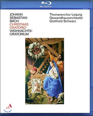Gotthold Schwarz 바흐: 크리스마스 오라토리오 BWV248 (Bach: Christmas Oratorio)