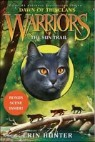 The Sun Trail (Warriors: Dawn of the Clans)
