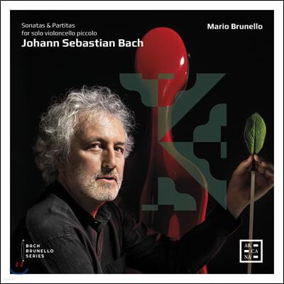 Mario Brunello 바흐: 첼로로 연주하는 무반주 바이올린 소나타와 파르티타 (Bach: Sonatas for solo violoncello piccolo)