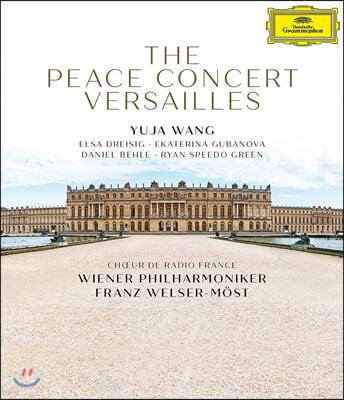 Franz Welser-Most 베르사유 평화 콘서트 - 프란츠 벨저-뫼스트 (The Peace Concert Versailles)