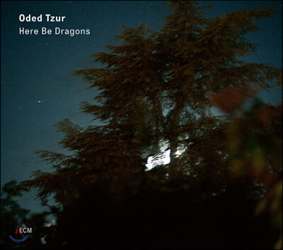 Oded Tzur (오데드 쭈르) - Here be Dragons