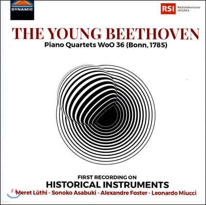 Leonardo Miucci 베토벤: 피아노 사중주 1-3번 (Beethoven: Piano Quartets WoO 36)