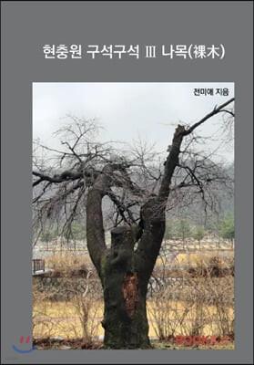 현충원 구석구석 III 나목(裸木)