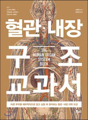 혈관 내장 구조 교과서