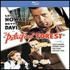 Petrified Forest (ȭ���� ��) (Black & White)(Blu-ray) (2013)