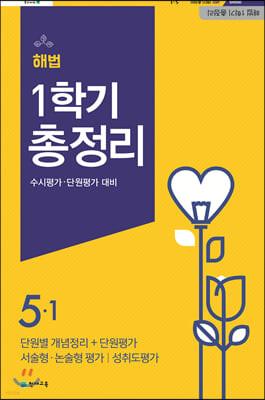 해법 1학기 총정리 5-1 (8절)(2020년)