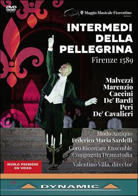 Federico Maria Sardelli 16세기 막간극 '페레그리나' (Intermedi della pellegrina: Firenze 1589)