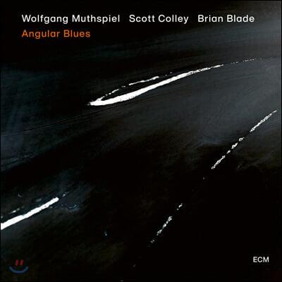 Wolfgang Muthspiel (볼프강 무스필) - Angular Blues [LP]