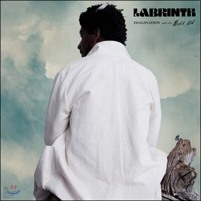 Labrinth (라브린스) - Imagination & The Misfit Kid [LP]