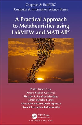 Practical Approach to Metaheuristics using LabVIEW and MATLA