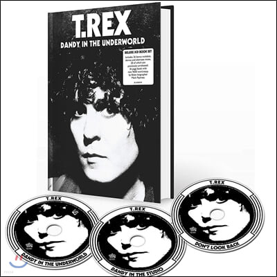 T. Rex (티렉스) - Dandy In The Underworld