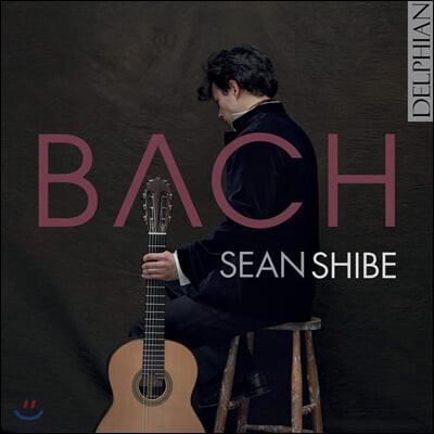 Sean Shibe 바흐: 류트 모음곡, 파르티타, 전주곡과 푸가, 알레그로 (Bach: Pour La Luth O Cembal)