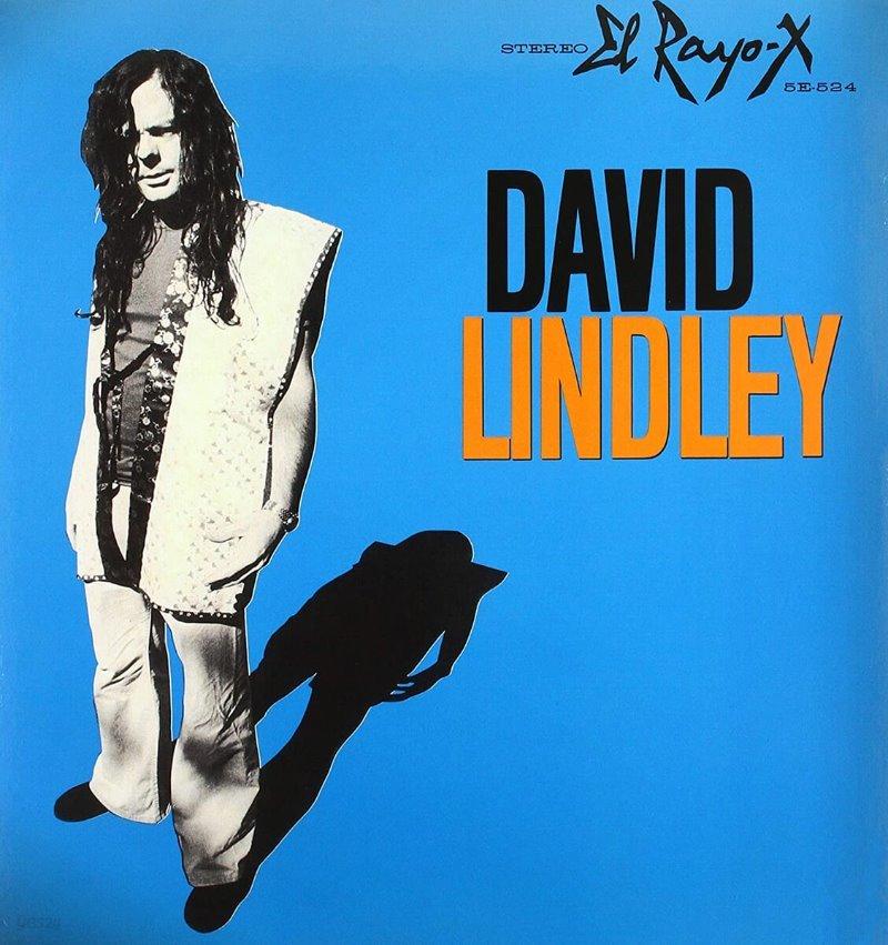 David Lindley (데이빗 린들리) - El Rayo-X [LP]