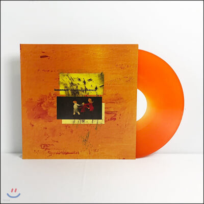 Basement (베이스먼트) - Colourmeinkindness [옐로우 & 오렌지 스월 컬러 LP]
