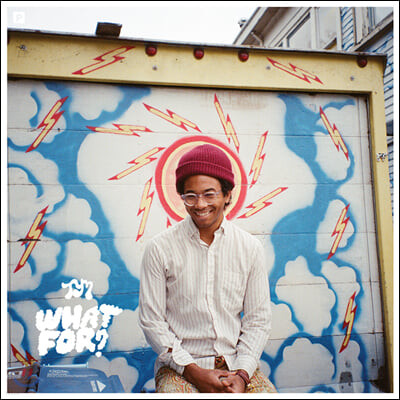 Toro Y Moi (토로 이 므와) - 4집 What For?