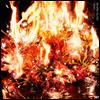 Aimer (에메) - Spark-Again (CD+DVD) (초회생산한정반)