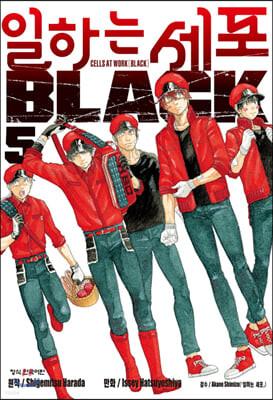 일하는 세포 BLACK 5