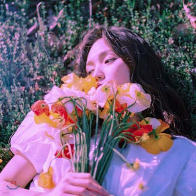 제이드 (Jade) - Violet Dreamer