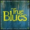 Taj Mahal, Corey Harris, Alvin Youngblood Hart, Phil Wiggins, Guy Davis, Shemekia Copeland - True Blues