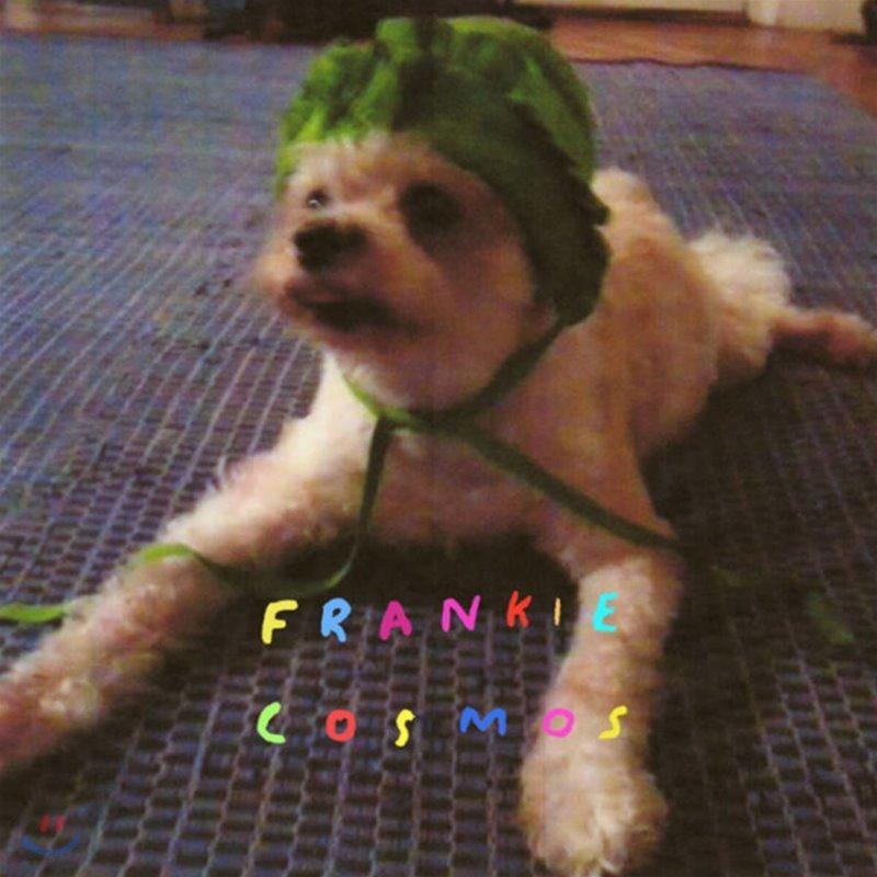 Frankie Cosmos (프랭키 코스모스) - 1집 Zentropy [LP]