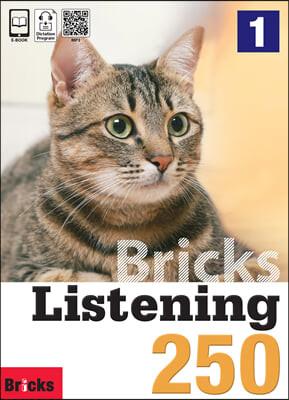 Bricks Listening 250-1