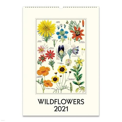 2021년 카발리니캘린더 Wildflowers