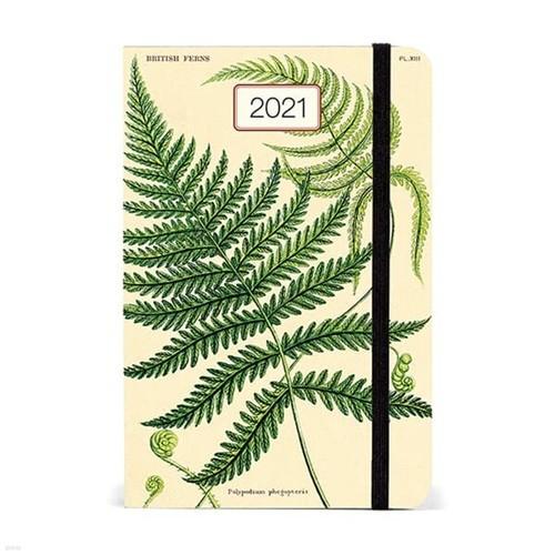 2021년 카발리니플래너 Ferns