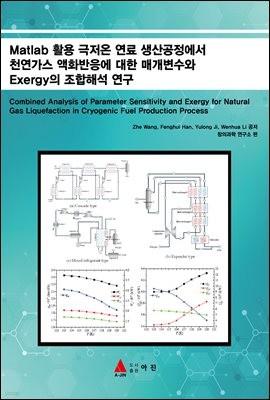 Matlab 활용 극저온 연료 생산공정에서 천연가스 액화반응에 대한 매개변수와 Exergy의 조합해석 연구