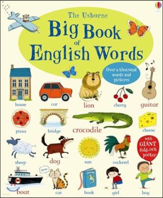 Big Book of English Words 어스본 어린이 영단어 빅북