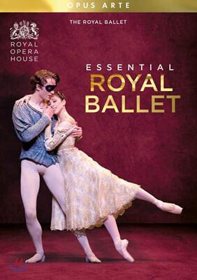에센셜 로열 발레 (Essential Royal Ballet )