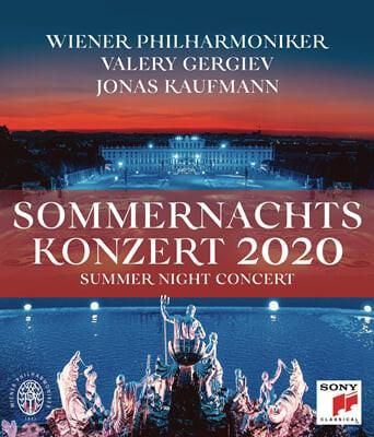 2020 빈 필하모닉 여름 음악회 [썸머 나잇 콘서트] (Summer Night Concert 2020 - Valery Gergiev) [DVD]