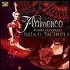 Rafa El Tachuela - Flamenco Rumba Guitarras