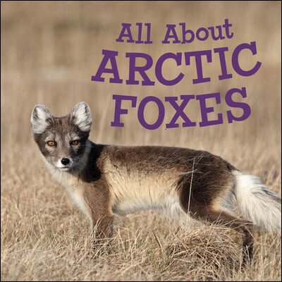 All about Arctic Foxes: English Edition