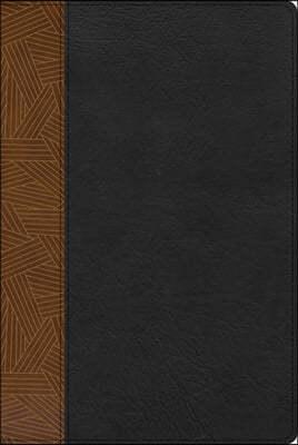 Rvr 1960 Biblia de Estudio Arcoiris, Tostado/Negro Simil Piel Con Indice