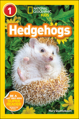 Ngr Hedgehogs (L1)