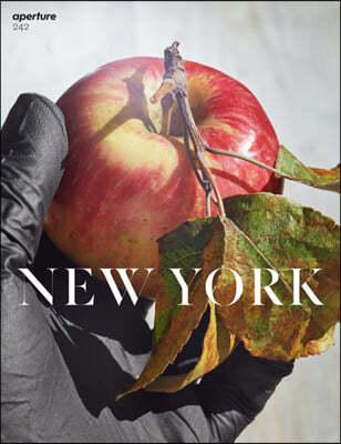 Aperture (계간) : 2021년 no.01 NEW YORK