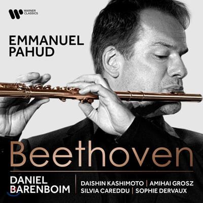 Emmanuel Pahud 베토벤: 플루트를 위한 실내악 작품 (Beethoven: for Flute)