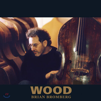 Brian Bromberg - Wood 브라이언 브롬버그 베이스 연주집