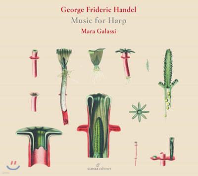 Maria Galassi 헨델: 하프 작품집 (Handel: Music For Harp)