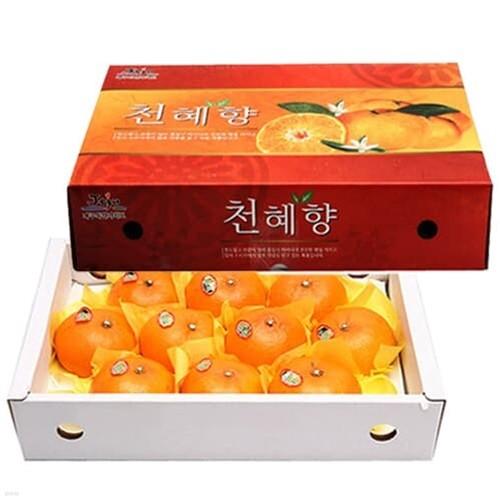 [청정제주] 새콤달콤 천혜향 3kg/13~17과