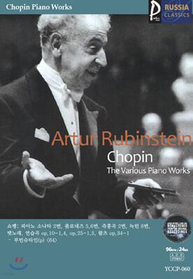(USB) [Artur Rubinstein] 골드 러시아클래식_060
