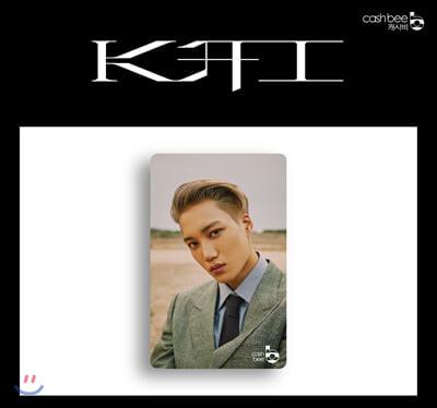 카이 (KAI) - 캐시비 교통카드