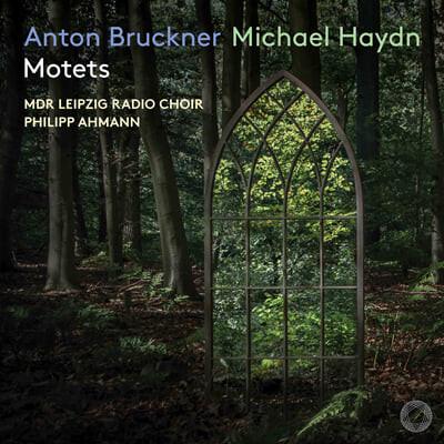 Philipp Ahmann 브루크너 / 미하엘 하이든: 모테트 작품집 (Bruckner / M. Haydn: Motets)