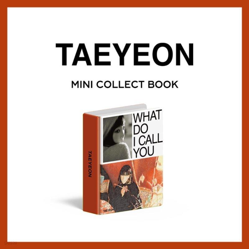 태연(TAEYEON) - MINI COLLECT BOOK [주문제작 한정반]