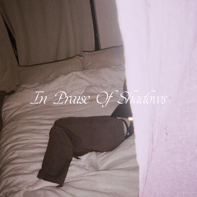 Puma Blue (푸마 블루) - In Praise Of Shadows [밀키 투명 컬러 2LP]