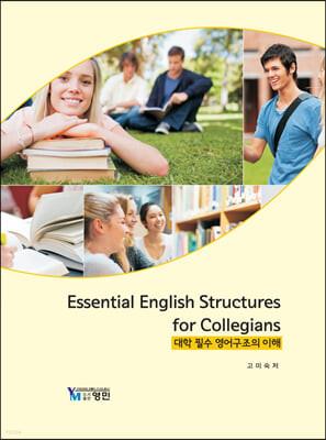 대학 필수 영어구조의 이해