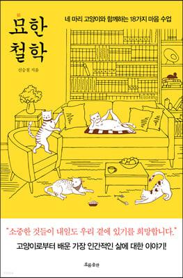 묘(猫)한 철학