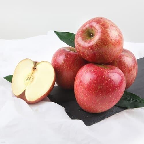 [초록자연] 사과 10kg(26-30과) 부모님 선물세트